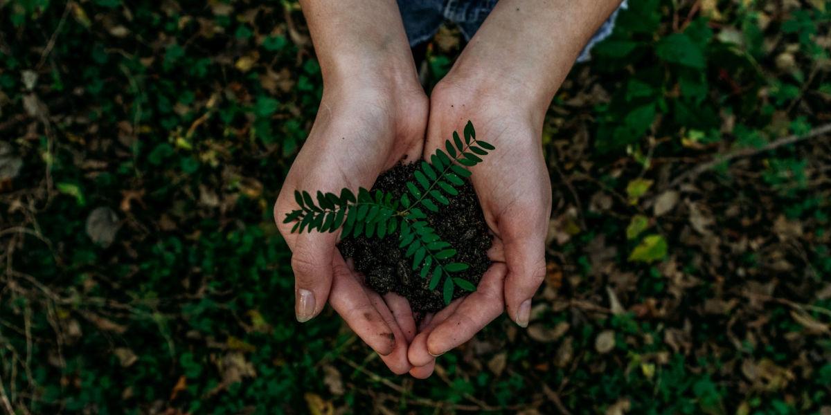Environmental Social Governance Investing